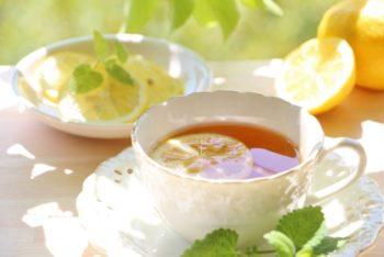 紅茶アドバイザー マイスター