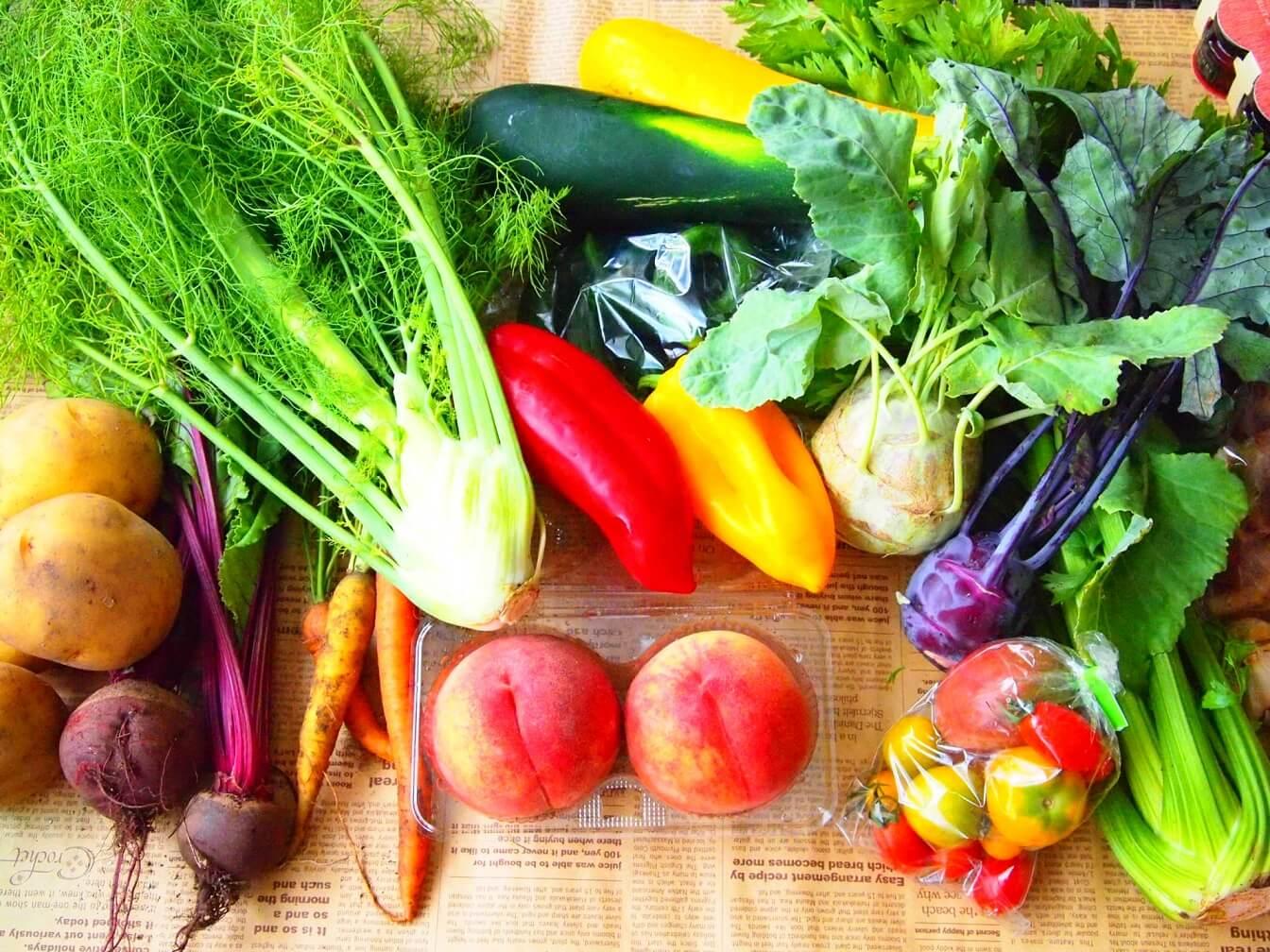 野菜ソムリエ資格